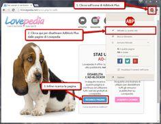 Come disabilito l'ad-blocker da Lovepedia? [Video Guida] • Lovepedia