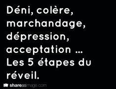 Déni, colère, marchandage, dépression, acceptation ... Les 5 étapes du réveil.