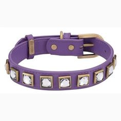 Monte Carlo Purple Dog Collar – Bark Label