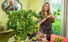 The Grapes of Health Home And Family Hallmark, Family Show, Hallmark Channel, Dream Garden, Projects To Try, Kimono Top, Health, Outdoor, Collection