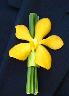 Google Image Result for http://linzievents.com/wp-content/uploads/2010/10/Boutanierre-Mokara_Orchid_Boutonniere.jpg
