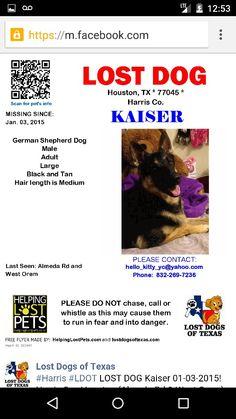 #Lost german shepherd male #KAISER 01-03-15  #Houston #TX