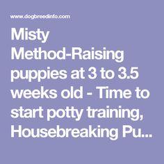 Tips on puppy potty training