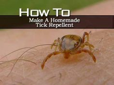 How to make a homemade tick repellent.  Need to have this for the summer....