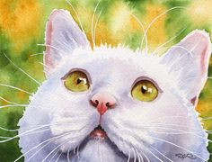 WHITE CAT Watercolor Art Print Signed by Artist DJ Rogers
