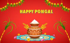 Pongal wishes pongal card pinterest pongal card pinterest m4hsunfo