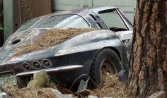 This is no way to treat a 1963 Corvette split-window coupe.                                 It's criminal ............