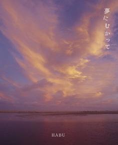 夢にむかって HABU, http://www.amazon.co.jp/dp/4756242650/ref=cm_sw_r_pi_dp_wgaGrb05MGXAY