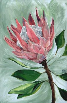 King Protea Botanical Flower Painting ORIGINAL Acrylic Canvas Artwork // Pink Hues, Gift for Mum, Lounge Wall Decor, Pretty, Beautiful Flower Painting, Original Paintings, Botanical Painting, Flower Painting Original, Protea Art, Acrylic Painting Flowers, Art Painting Acrylic, Art, Artwork Painting