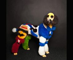 The Deeply Weird World Of Extreme Dog Grooming. Photo by Paul Nathan. What the ...?