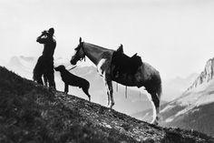 American Cowboys of the Wild West | #ornhansen