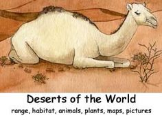 Deserts of the World Index -- Exploring Nature Educational Resource