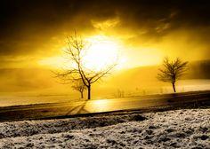 »Into the Sun« by Joerg Piechotka
