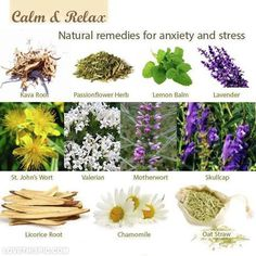 Stress and anxiety remedies herbs flowers health herbs natural remedy remedies natural remedy images roots herbal