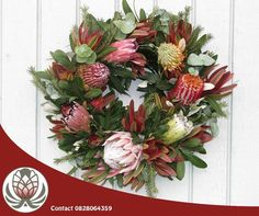 Last week we showed you an idea of a protea themed table wreath. Have a look at this protea and fynbos themed traditional door wreath. Door Wreaths, Grapevine Wreath, Christmas Wreaths, Xmas, Traditional Doors, How To Make Wreaths, Grape Vines, Floral Wreath, Table Decorations