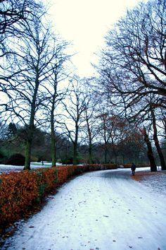 Calderstones Park in the winter...