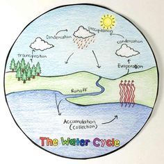 Science Drawings Water Cycle - The Water Cycle Circle Book Water Cycle Craft, Water Cycle For Kids, Water Cycle Project, Water Cycle Activities, Science Activities, Weather Activities, Science Experiments, Weather Crafts, Science Crafts