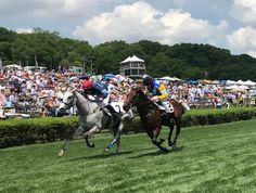 See our Photos from Steeplechase 2018.