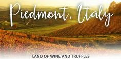 Exclusive Tuscany vacation package with private wine cellar experience and truffles cooking class.