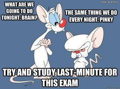 Pinky and the Brain On: Studying for Exams
