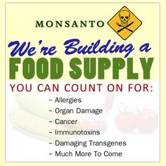 The 7 Biggest Reasons To Never Eat Genetically Modified Foods -     1. Increased Pesticide Use. 2. They Have Been Shown To Be Dangerous To Your Health and Unsafe To Eat.  3. GM Foods Are Hidden In Animal Feed  4. GM and non-GM Cannot Co-Exist  5. Long-term Economic Disaster For Farmers  6. GM Companies Cannot Be Trusted  7. GM Foods Will Never Solve The Food Crisis