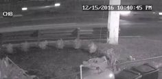 Proveen vídeo para tratar de localizar al responsable del...