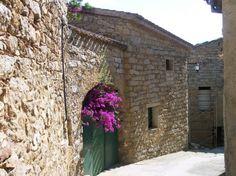 """Il B&B """"I Limoni"""" si trova a Olzai, un piccolo paese nel cuore della Sardegna in provincia di Nuoro. E' un'antica abitazione del 1800 costruita in granito, che dispone di tre confortevoli camere doppie, ognuna con bagno proprio e con vista panoramica, di una cucina, una sala da pranzo e un giardino.   Presente su www.BedAndBreakfastItalia.com #BnBItalia #BnBSardegna #BnB #BedAndBreakfast #BeB #BeBItalia #BeBSardegna"""