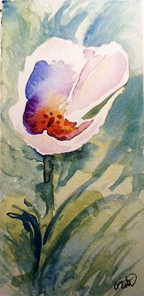Blanche, aquarelle par Annie Collette Annie, Watercolors, Painting, Art, Watercolor Painting, Paint, Watercolor Paintings, Painting Art, Watercolor Drawing