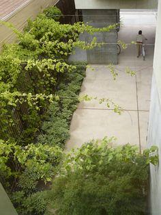 tension wire for side garden/zen garden