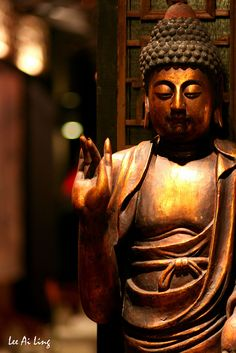 """""""Better than a thousand hollow words, is one word that brings peace."""" -- Buddha"""