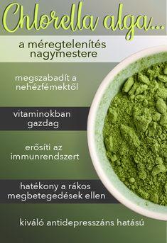 Beans, Vegetables, Food, Seaweed, Essen, Vegetable Recipes, Meals, Yemek, Beans Recipes