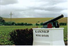 Kanonkop Wine Estate is situated on the lower slopes of the Simonsberg Mountains. This estate is famous for the Pinotage wines produced here.