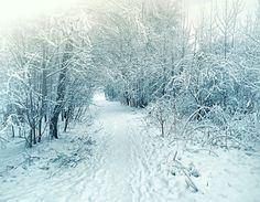 Winter journey...