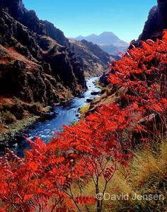Imnaha River, Oregon