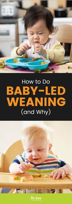 Baby-led weaning is an approach to feeding an infant that promotes his ability to self-feed finger foods and set the pace of the meal. Unlike traditional feeding methods that start when an infant is around 4 months old, baby-led weaning begins at around 6 months. Find out how to do it.