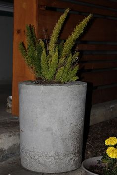 Cement planters how-to
