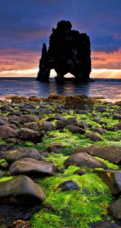 Hvitserkur, an animal shaped petrified lava-rock formation in the north of Iceland (Island), pictured on one glorious summer sunrise   9 photos that prove Iceland is the most epic place on Earth