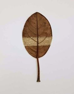 Amazingly Intricate Needlework On Leaves - Susanna Bauer Land Art, Embroidered Leaves, Crochet Leaves, Magnolia Leaves, Art Graphique, Nature Crafts, Fabric Art, Mixed Media Art, Textile Art