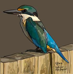 Kōtare (Kingfisher) on Photo Block Framed Quotes, Art Quotes, Quote Art, New Zealand Art, Kiwiana, Photo Blocks, Name Art, Borders And Frames, Kingfisher