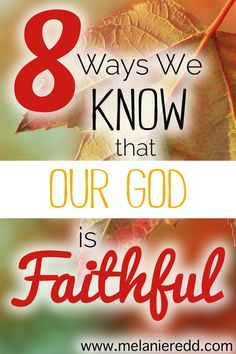 Sometimes, it just doesn't FEEL like God is being very faithful in our lives. When we struggle to believe, promises from the Bible can give us much courage during these seasons. Here are 8 reasons that we know God is faithful. Why not stop by for a dose of hope today?
