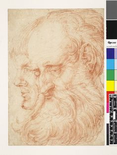 Hans Baldung - Study of the heads of two men, both turned to l; the nearer being an old man with long beard, his eyes slightly lowered, the other a younger man Red chalk, over black chalk