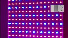 LED Plant Grow Light Panel Review
