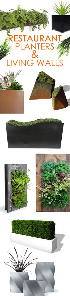 Spruce up meal time with a modern planter or living wall from our Restaurant Planter collection! Browse hundreds of styles of commercial planters to find just what you're looking for.