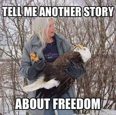 THE PERFECT BEDTIME STORY AKA A DRAMATIC RETELLING OF THE CLASSIC FILM THE PATRIOT :
