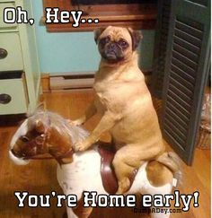 "The Best Of ""You're Home Early"" – 24 Pics"
