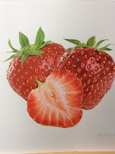 strawberry Fruits Drawing, Food Drawing, Watercolor Fruit, Watercolor Artwork, Botanical Art, Botanical Illustration, Strawberry Drawing, Strawberry Tattoo, Fruit Painting