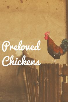 New Board Cover  Click here to see all of our Preloved chickens blogs! Cover, Board, Planks