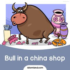 Idiom of the day: Bull in a china shop. Meaning: A clumsy person. #idiom #idioms #english #learnenglish #bull