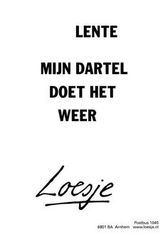 Permalink voor ingesloten afbeelding Words Quotes, Wise Words, Inner Smile, Dutch Quotes, Just Love, Proverbs, Spring, Best Quotes, Texts