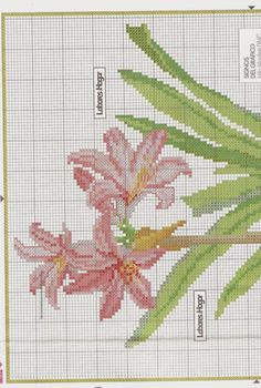 FREE GRAPHICS POINT CROSS: FLOWERS 1-10